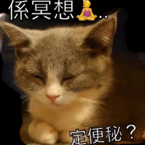 撳寶羅壹 - Sticker 6
