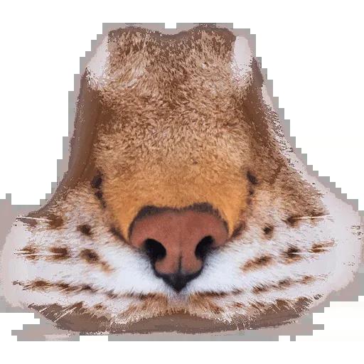 Animal Faces Masks - Sticker 14