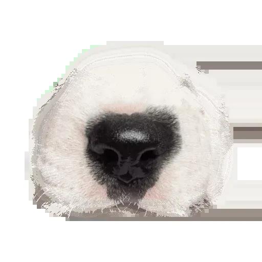 Animal Faces Masks - Sticker 4