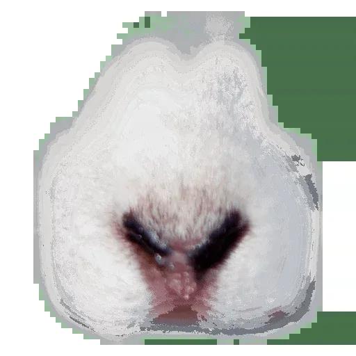 Animal Faces Masks - Sticker 20