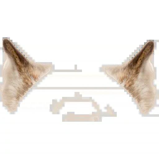 Animal Faces Masks - Sticker 21