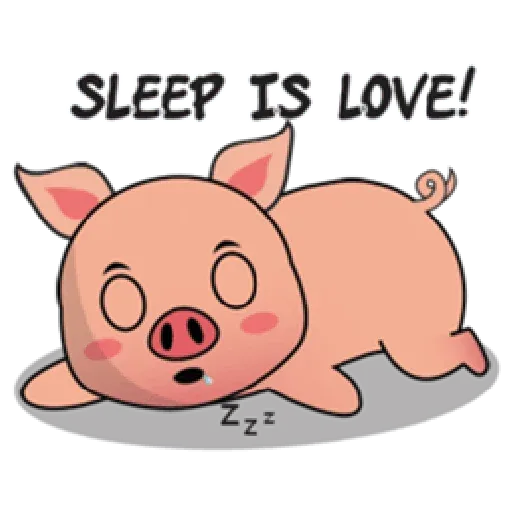 Laizy Piggy : Daily Talk - Sticker 11