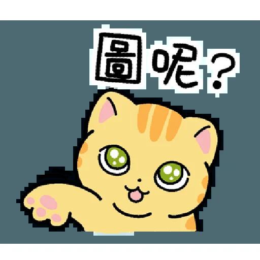 柑柑貓 香港潮語 - Sticker 14