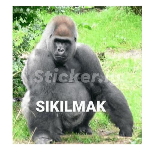 Hey! Give me a titlehi - Sticker 4