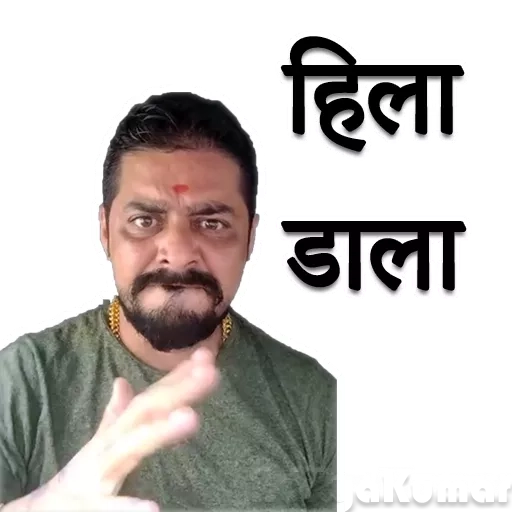 Hindustani bhauu - Sticker 8
