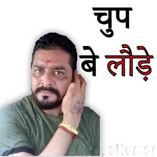 Hindustani bhauu - Sticker 17