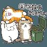 白爛貓1 - Tray Sticker