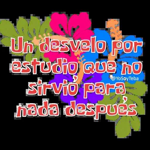Frases Bob Esponja Español - Sticker 20