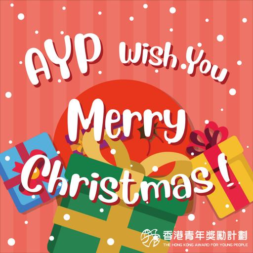AYP festival sticker - Sticker 2