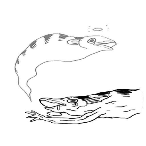Mr. Fish - Sticker 6