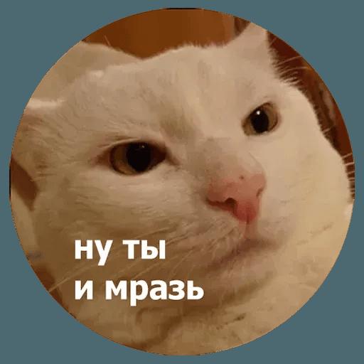 aleshaanimals - Sticker 29