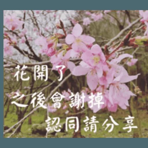 長輩圖1 - Sticker 6