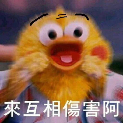 on9鸚鵡兄弟 - Sticker 3