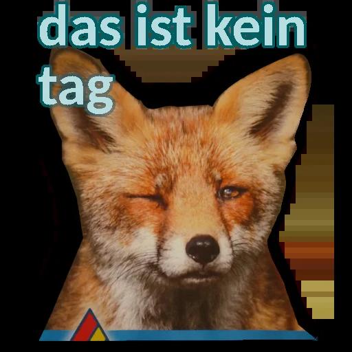 Test - Sticker 5