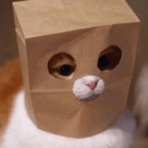 Meow:3 (1) - Sticker 28