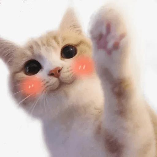 Meow:3 (1) - Sticker 13