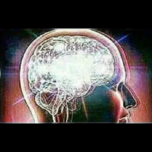 Expanding Brain - Sticker 7