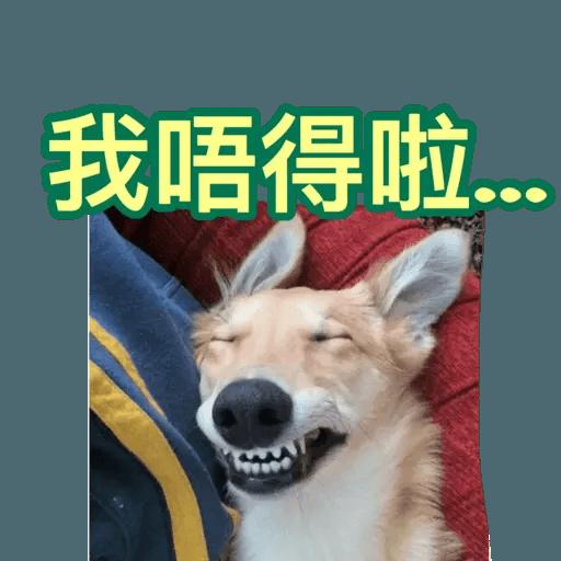 樣樣衰衰的動物 - Sticker 12