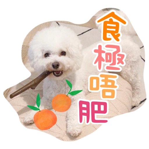 Kira Chan CNY 小新粒子賀年貼紙 - Sticker 4