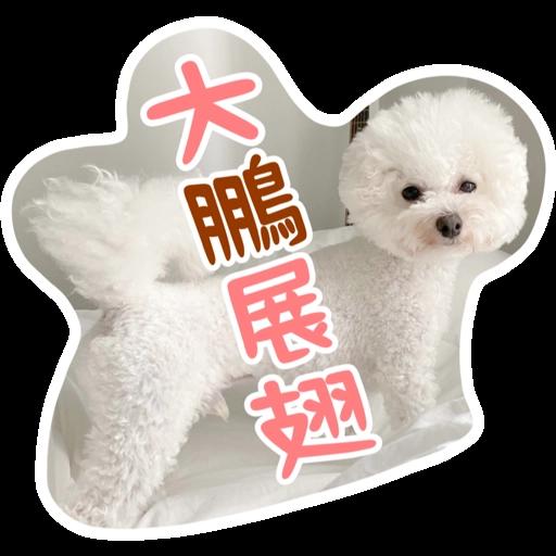 Kira Chan CNY 小新粒子賀年貼紙 - Sticker 3