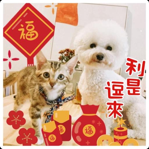 Kira Chan CNY 小新粒子賀年貼紙 - Sticker 15
