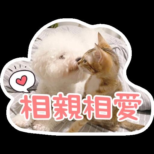 Kira Chan CNY 小新粒子賀年貼紙 - Sticker 5