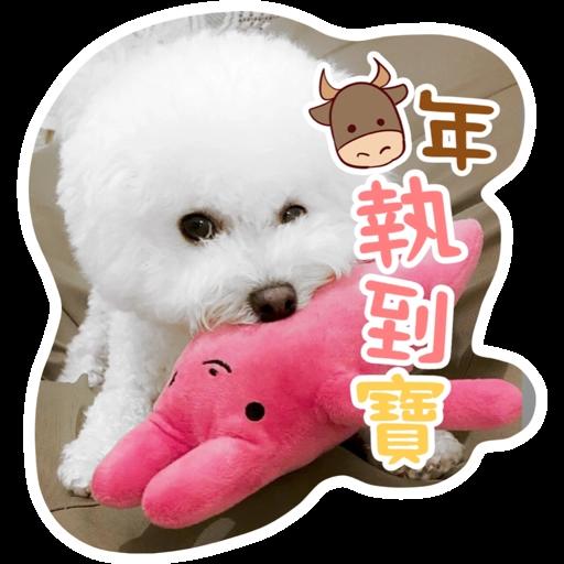 Kira Chan CNY 小新粒子賀年貼紙 - Sticker 6