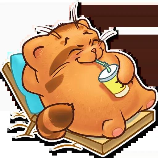 Orange Meow - Sticker 13