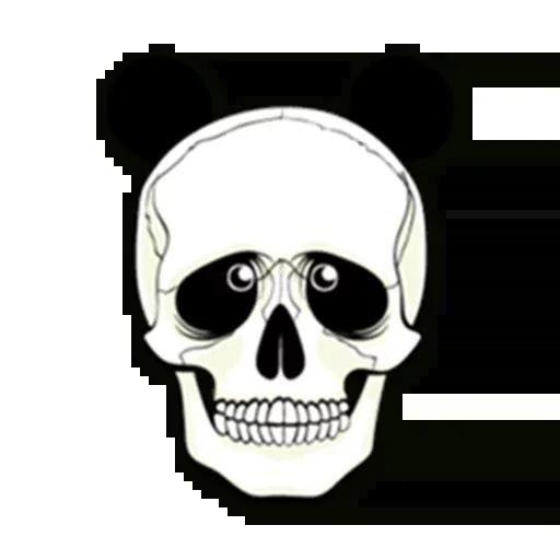 Skull - Sticker 24