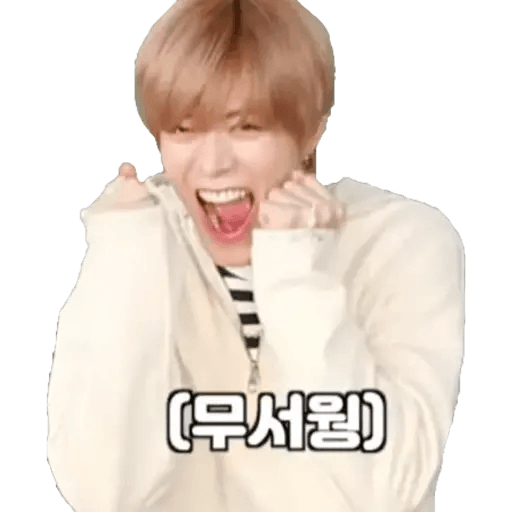 NCT memes - S6 - Sticker 14