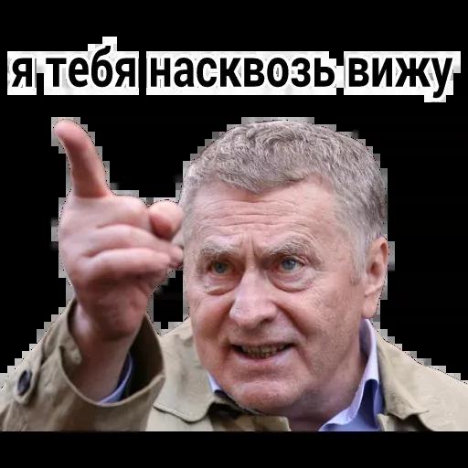 Владимир Вольфович Ж - Sticker 6