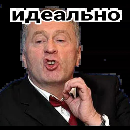 Владимир Вольфович Ж - Sticker 8
