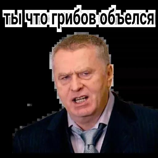 Владимир Вольфович Ж - Sticker 12