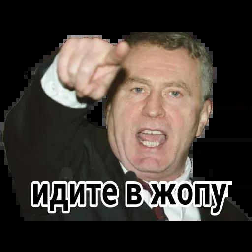 Владимир Вольфович Ж - Sticker 14