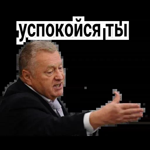 Владимир Вольфович Ж - Sticker 16