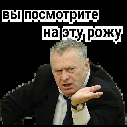 Владимир Вольфович Ж - Sticker 11