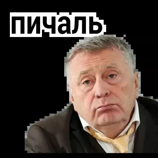 Владимир Вольфович Ж - Sticker 13