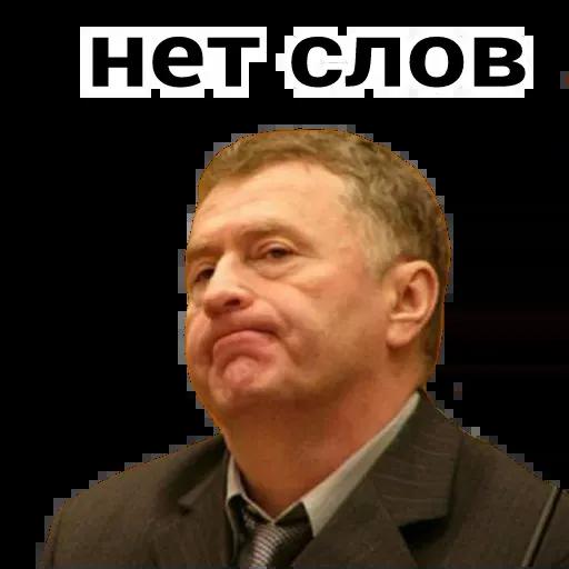 Владимир Вольфович Ж - Sticker 3
