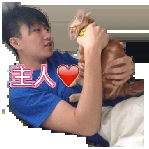 leungtinkei - Sticker 10