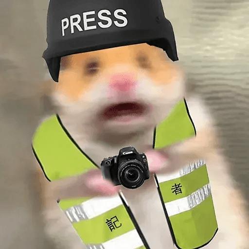 倉你老鼠 - Sticker 4