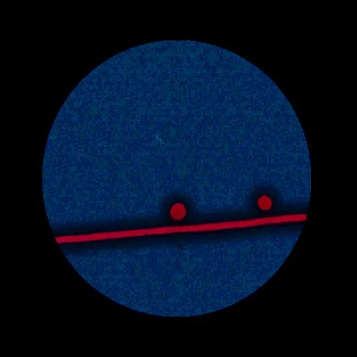 test - Sticker 22