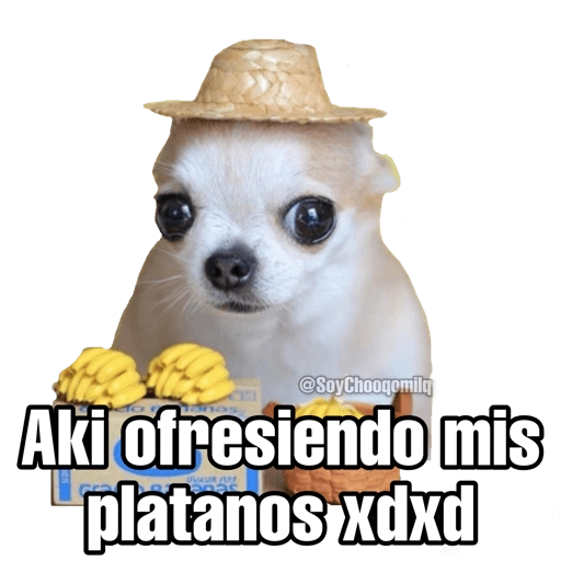 Marroneros - Sticker 6