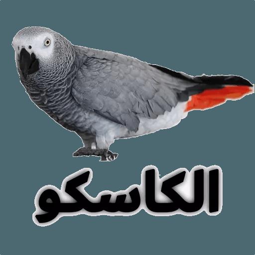 alrumaithi2 - Sticker 27