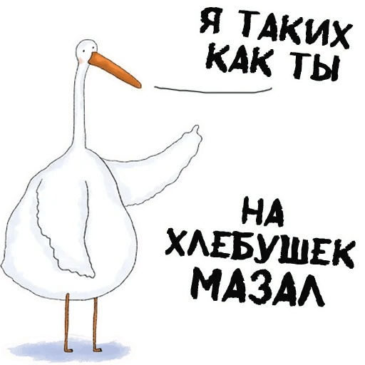 Net - Sticker 19