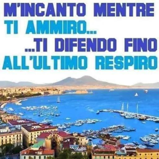 Forza Napoli - Sticker 15