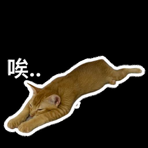 Catssss on board - Sticker 3
