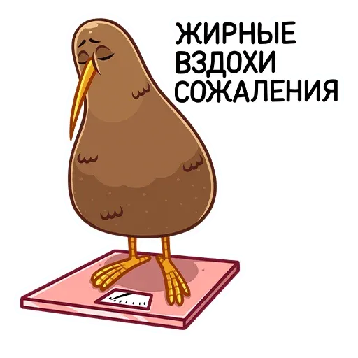 Kiwi bird - Sticker 28