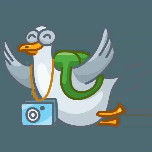 Pidgeons - Sticker 21