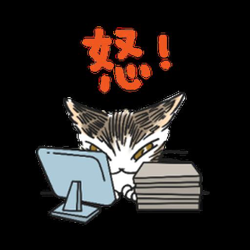 達洋貓-日常篇 - Sticker 1