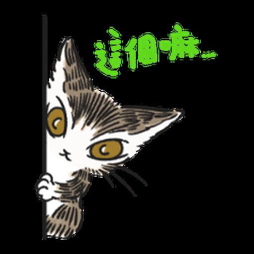 達洋貓-日常篇 - Sticker 13